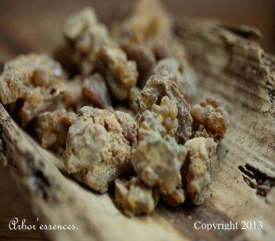 Myrrhe première qualité