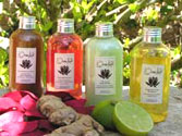 Shampoings naturels et soins capillaires ayurvédiques