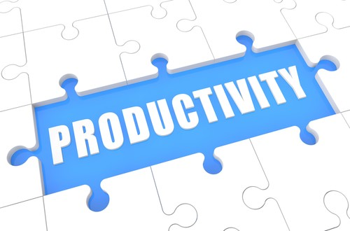 The Productivity Puzzle – Is it so Hard to Solve?