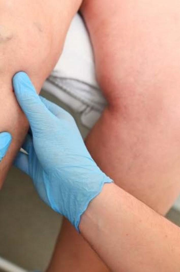 Pavin arbres automne