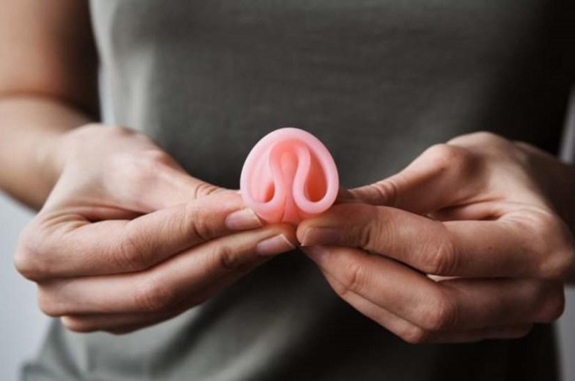 arbre au feuillage rose proche aquarelle