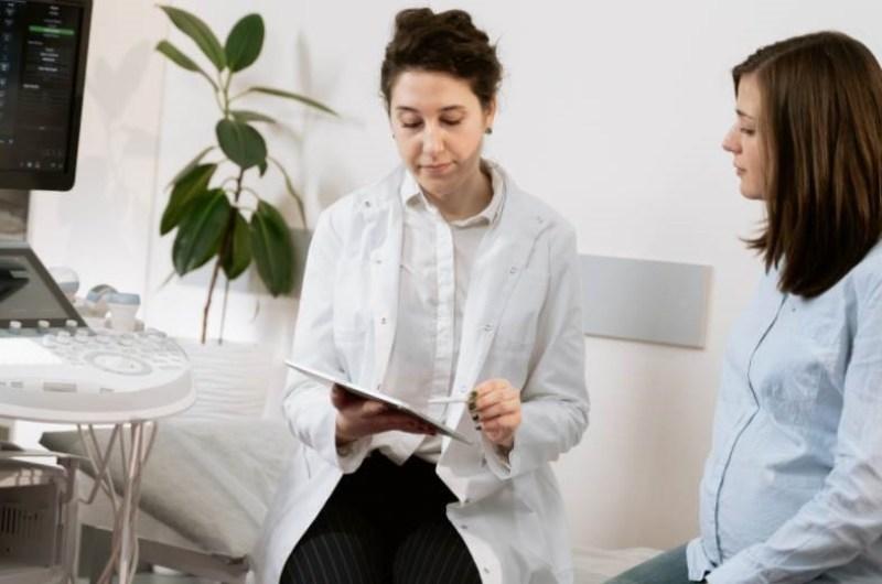 arbres epineux feuillu automne