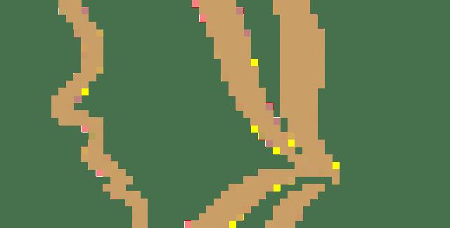 automne paysage multicolor