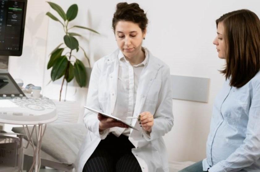 champignon tricholome lamelles