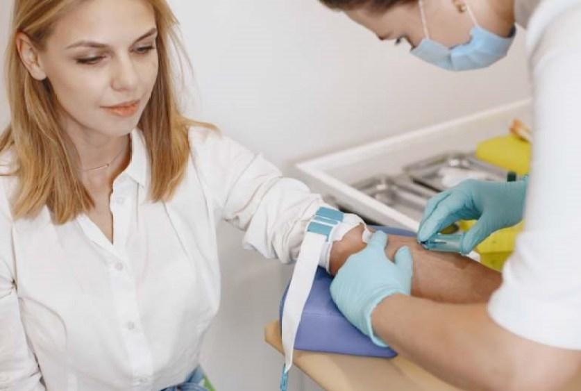 chatons plantes