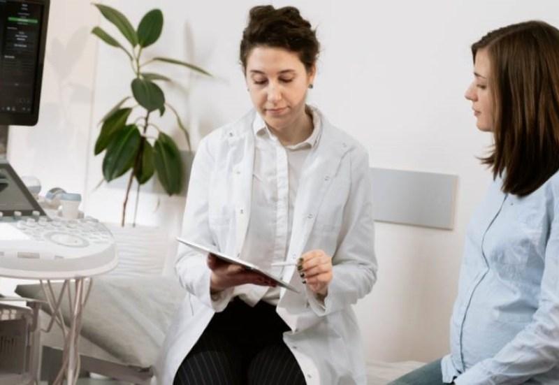 dessin aquarelle puzzle écureuil