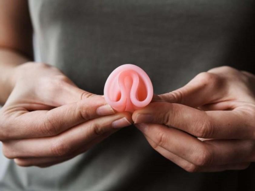deux clous arbre