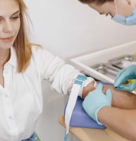 oiseauarbre