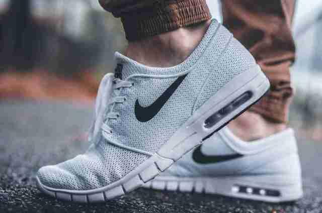 vaches sancy brouillard