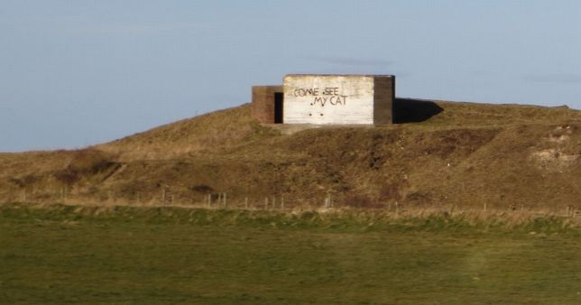 """WW2 era gun bunker on a hill with """"Come see my cat"""" spray painted on one side"""