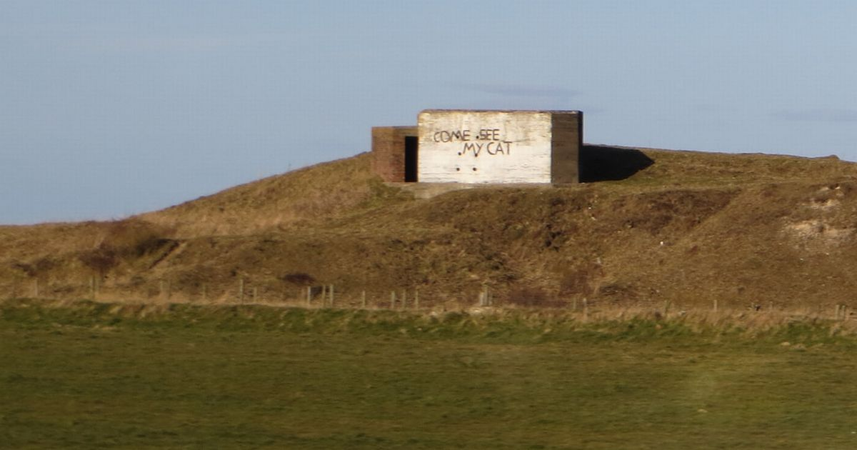 "WW2 era gun bunker on a hill with ""Come see my cat"" spray painted on one side"