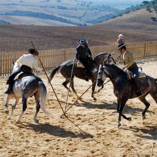 Jerez Riding