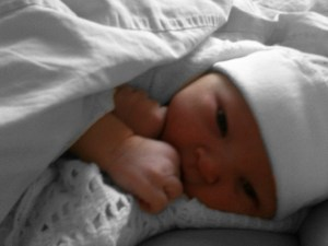 Baby Poppy Rose - Arbworx's newest arrival