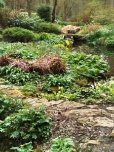 Vann, water garden