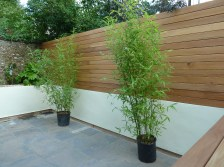 Balau hardwood screen, contemporary garden makeover, Hove brighton Sussex