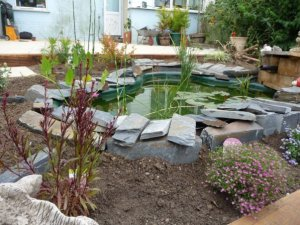 Full garden makeover incorporating an ornamental pond with natural slate surround and specimen planting border