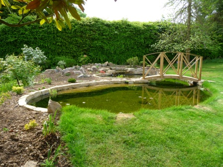 Ornamental pond as central garden feature with specimen planting and custom built softwood bridge
