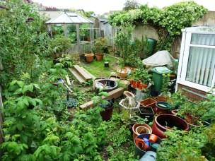 An unlandscaped garden before the Arbworx team begin work