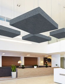Acoustic Ceiling Treatment