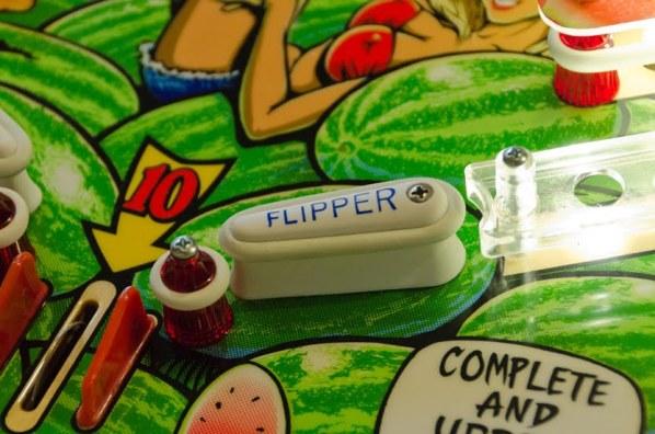 WN_Flipper_CU_jp