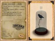 {A} Animal Specimen - Crown