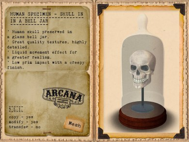 {A} Human Specimen - Skull in a Bell Jar Vendor