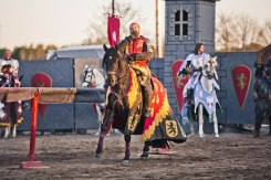 Ritter im Abendlicht