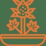 cannabis-cultivators-architect-arch-7