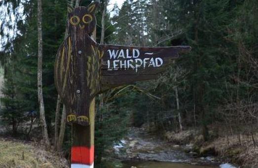 Geocachen entlang des Waldlehrpfads Vorau/Stmk