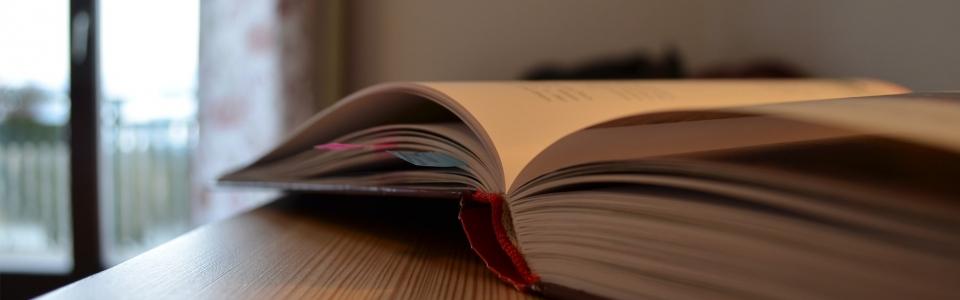 Tagebuch-Titel Kopie