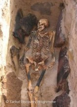 A photo of a skeleton, excavated but still in the ground