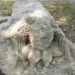 Archaeologists Find Stone Eagle Relief near Ancient Roman City Novae in Bulgaria's Svishtov