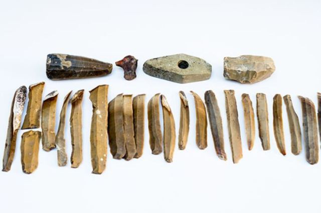 A set of 23 splits (each of them over 20 cm in length) from a single flint core prepared to be made into knives is one of the most interesting finds from the September 2016 excavations of the 6,500-year-old flint tool factory in Bulgaria's Kamenovo. Photo: Razgrad Regional Museum of History