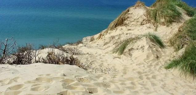 Treasure Hunters Raid Bronze Age Burial Mound in Denmark's Jutland