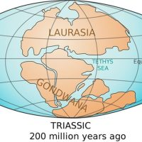 Lost Continent from Gondwana, Mauritia, Lurking in Indian Ocean underneath Mauritius, Scientists Find