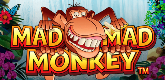 Mad Mad Monkey Game