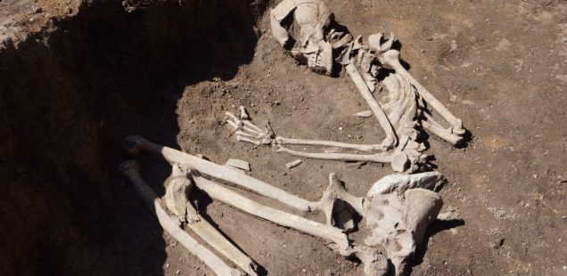 Odd 8,000-Year-Old Neolithic Burials, Oldest in Sofia Valley, Discovered in Bulgaria's Capital