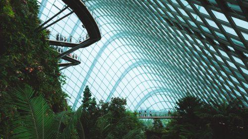 Will architecture exist in the future?