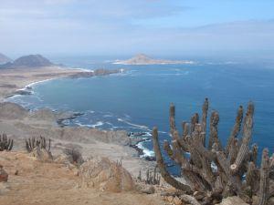 Vue de la côte aride du désert d'Atacama, parc national Pan de Azucar. Credits : Aaron Bornstein.