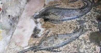 Découverte d'une mosaïque romaine dans la villa d'un riche pêcheur