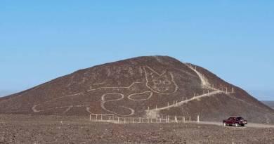 Lignes de Nazca : découverte d'une figure de chat de 37 mètres