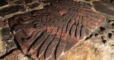 Exceptionnel bas-relief aztèque d'un aigle retrouvé au centre de Mexico