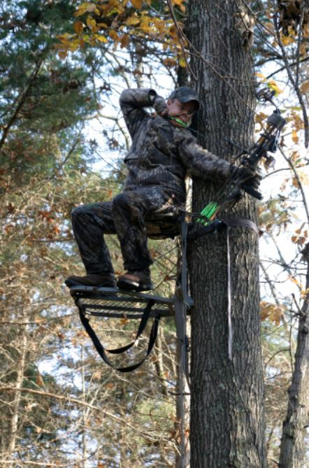 shooting a compound bow standing on treestand