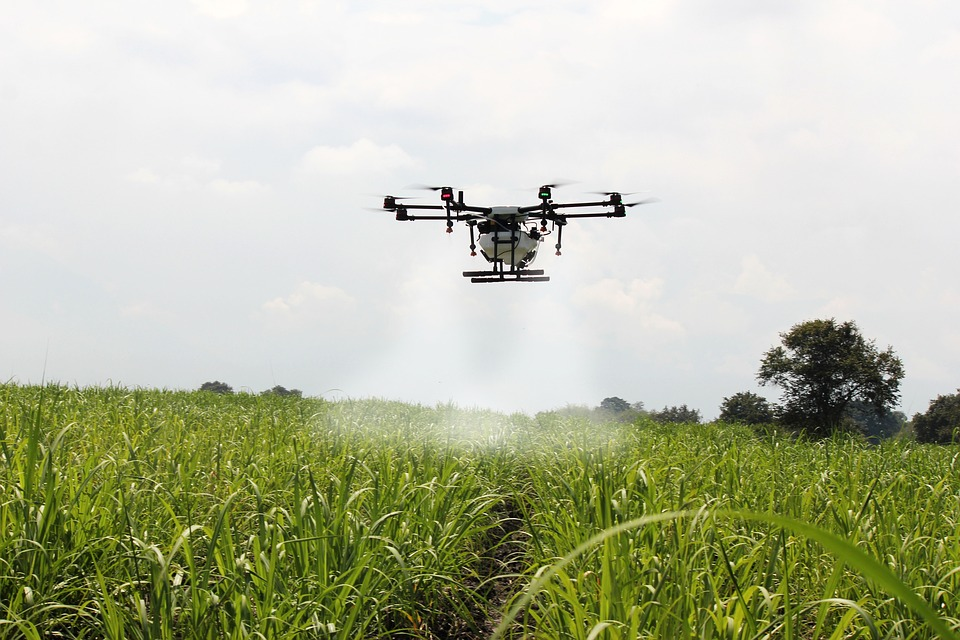 A drone sprays sugar cane at a farm in Colombia.