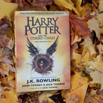 harry-potter-in-leaves