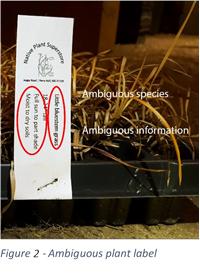 ArcheWild Plant Labeling Figure 2