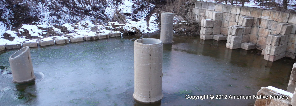 Priamry Pond with Art