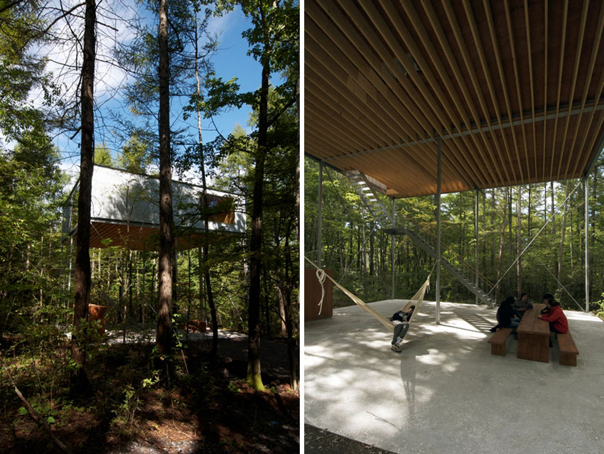Views - Pilotis in a Forest House / Go Hasegawa