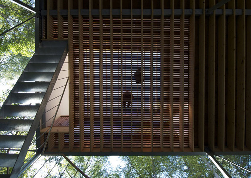 Stair and wood detail - Pilotis in a Forest House / Go Hasegawa