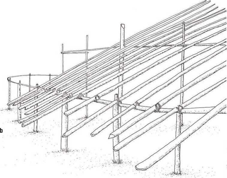 Structure Detail - Shabono: Circular Communal Dwellings in Venezuela